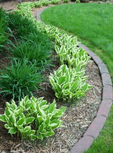 Cheap Landscaping Best Of 20 Easy Landscaping Ideas for Your Front Yard
