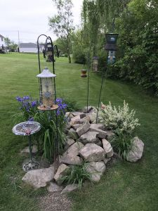 Cheap Landscaping Unique Bird Feeding Station