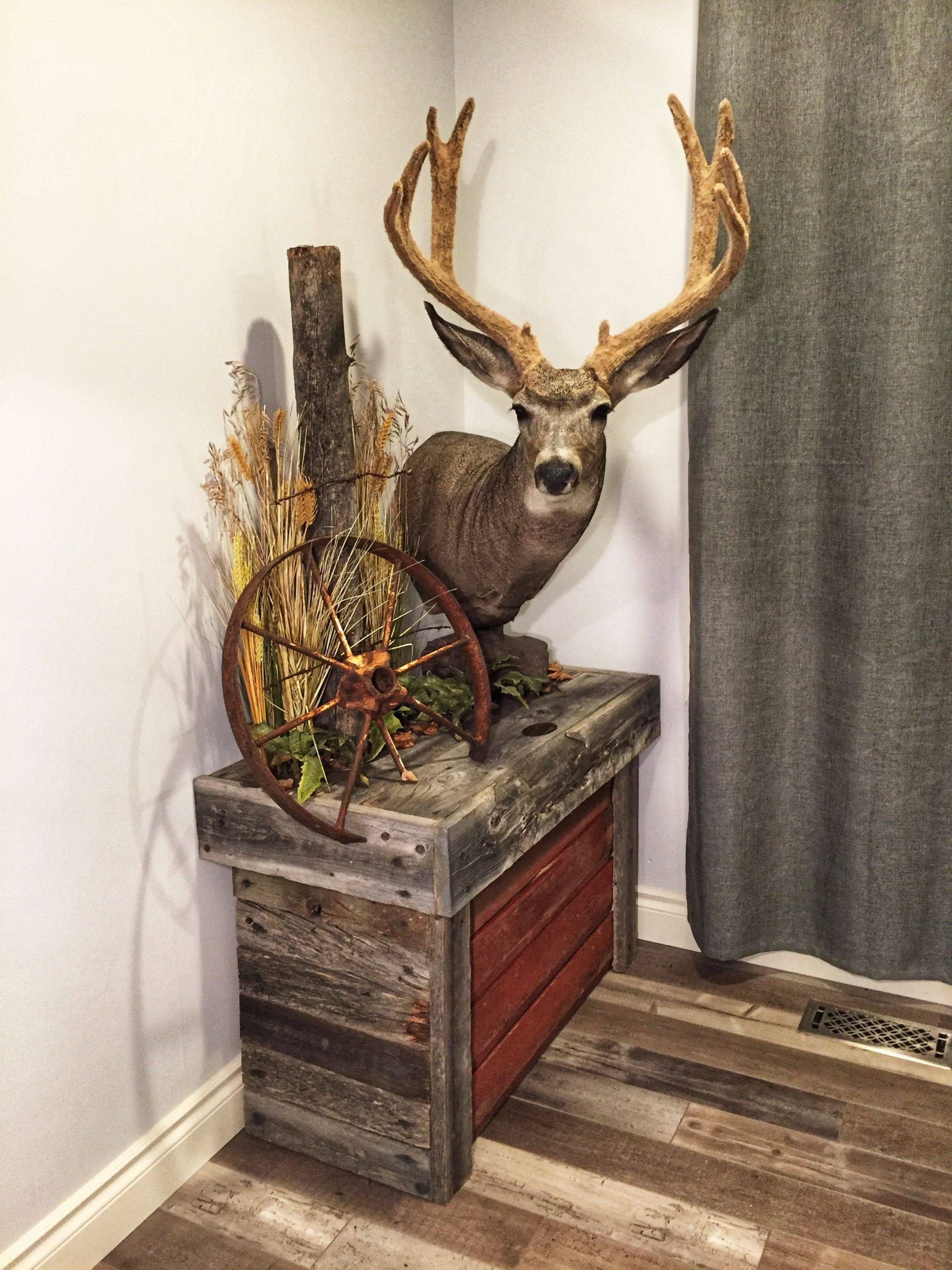 Deer Antlers Home Decor Beautiful Basementmancaveideas