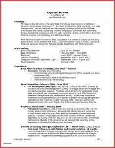 New Lease On Life Unique It Director Resume Great Best Examples Resumes Ecologist