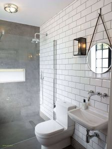 Small Bathroom Remodel Luxury Lovely Outdoor toilet